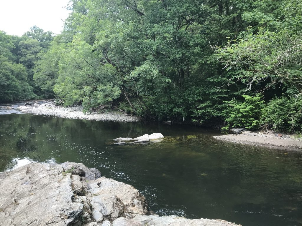 Double Waters Tavistock
